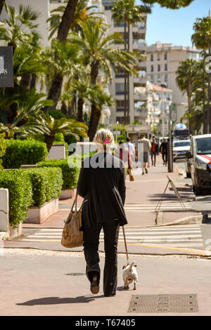 CANNES, FRANCE - APRIL 2019: Person walking a small dog on the seafront in Cannes - Stock Photo