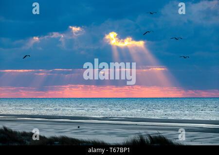 North Sea Island Juist, East Frisia, Dunes, Beach, Sunset, Lower Saxony, Germany, - Stock Photo