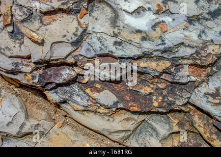 Close-up photography of sedimentary rock texture. Captured in a desert in the Andean mountains of central Colombia. - Stock Photo