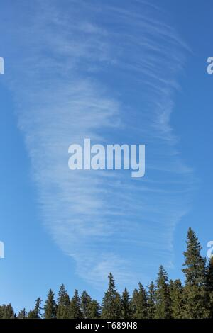 Unique clouds in a blue sky in Willamette National Forest in Oregon, USA. - Stock Photo