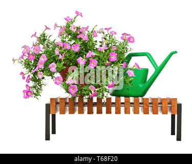 Pink petunia flowers with garden accessories isolated on white background. - Stock Photo