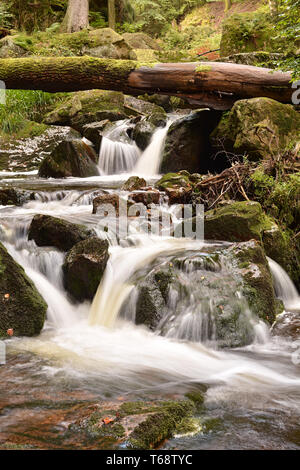 the river Ilse at Ilsenburg in the Harz National P - Stock Photo