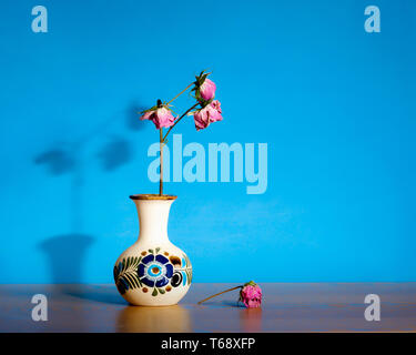 Abstract still life displaying dead, dried, dry roses in ceramic pot against blue large background and copy space- passage of time, loneliness and dea - Stock Photo