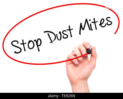 Man Hand writing Stop Dust Mites  with black marker on visual screen. - Stock Photo