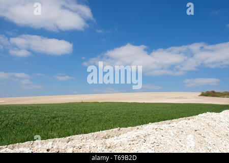 chalky fields and crops on South Downs near St. Roche's Hill, the Trundle, Chichester, Sussex, UK, April. South Downs National Park. - Stock Photo