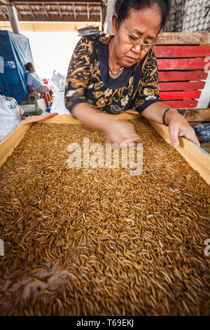 Woman sorting raw food being prepared for sale in market - Stock Photo