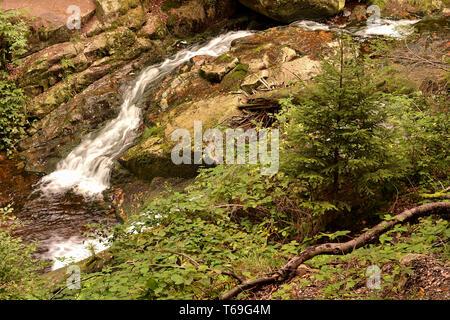 the river Ilse in the Harz National Park in Ilsenburg - Stock Photo