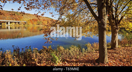 Seilersee in autum, Iserlohn, Sauerland, Noth Rhine-Westphalia, Germany - Stock Photo