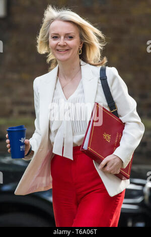 London, UK. 30th Apr, 2019. Elizabeth Truss MP, Chief Secretary to the Treasury, arrives at 10 Downing Street for a Cabinet meeting. Credit: Mark Kerrison/Alamy Live News - Stock Photo