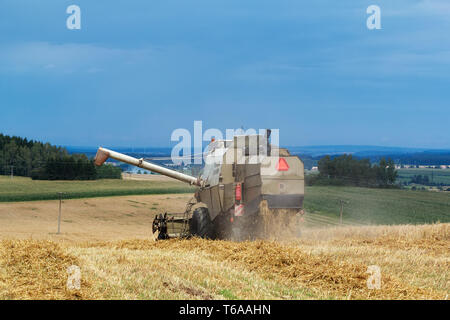 old combine on field harvesting gold wheat - Stock Photo