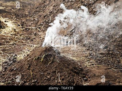 little smoking charcoal pile, Ennepetal, Ruhr Area, North Rhine-Westphalia, Germany - Stock Photo