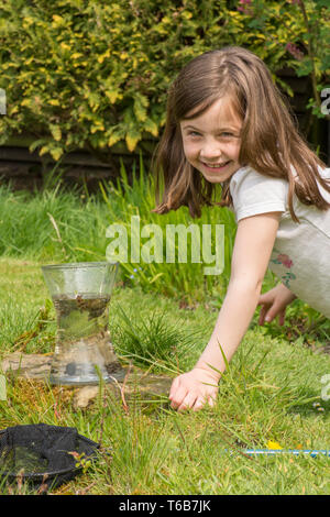 young girl, eight years old, pond dipping, catching pond life, tadpoles, dragonfly larvae, in net, and putting them in jar, garden wildlife pond, - Stock Photo