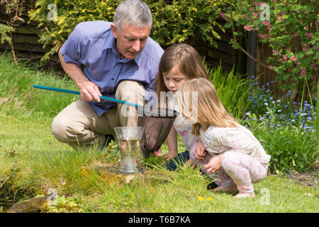 grandfather pond dipping with two grandchildren, teaching them about, and showing them, wildlife, young girls, 3 and 8 years old. net and jar - Stock Photo
