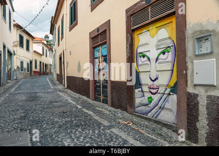 Murals painted as part of the Art of the Open Doors project in the Zona Velha (Old Town) area of Funchal, Madeira - Stock Photo