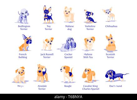 Vector illustration of dogs puppies different breeds - Stock Photo