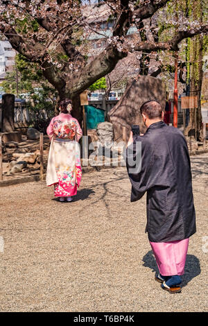 25 March 2019: Tokyo, Japan - Man photographing woman under cherry blossom in the grounds of the Asakusa Buddhist shrine in Tokyo; both are wearing... - Stock Photo