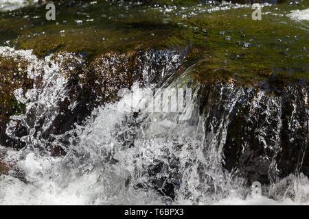 Stream Selke, Harz Mountains, Germany - Stock Photo