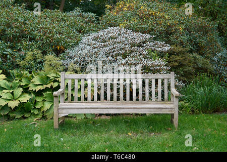 Wooden park bench in a public park in Magdeburg - Stock Photo
