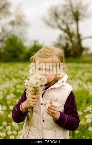 adorable blond girl blowing dandelion flower in beautiful meadow - Stock Photo