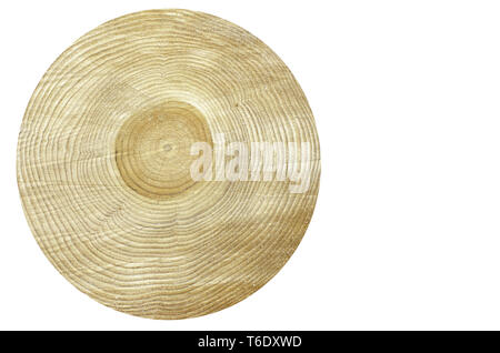 Tree Trunk cross section isolated - Stock Photo