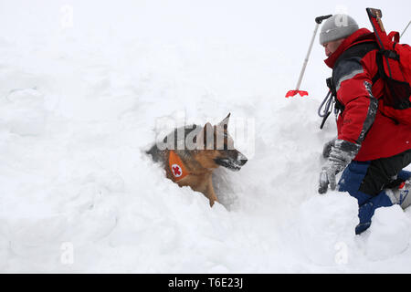 Rescuer from the Mountain Rescue Service at Bulgarian Red Cross - Stock Photo