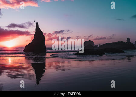 Silhouette of a bird taking flight from a rock on the Pacific coastal waters of Bandon Beach, Oregon at sunset. - Stock Photo