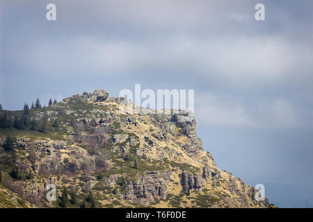 Impressive rocky cliff covered by pine trees, colorful moss and yellow grass against a soft blue sky with white clouds - Stock Photo