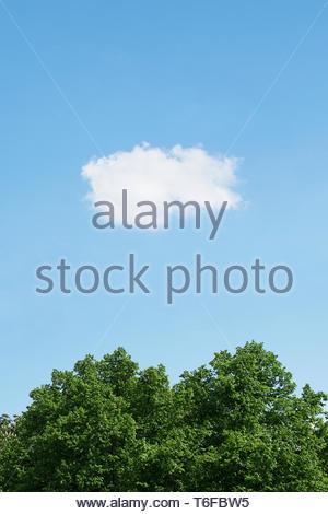 blue sky with single cloud - Stock Photo