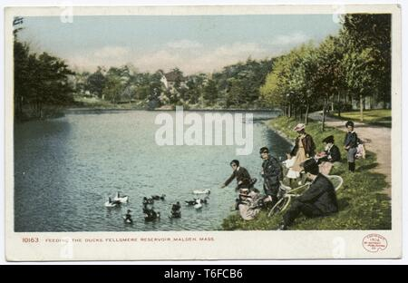 Detroit Publishing Company vintage postcard reproduction of people feeding the ducks at Fellsmere Reservoir, Malden, Massachusetts, 1906. From the New York Public Library. () - Stock Photo