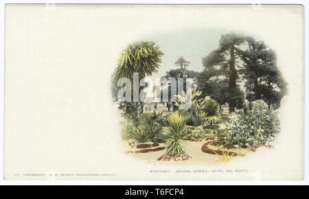 Detroit Publishing Company vintage postcard reproduction of the Arizona Gardens in Hotel Del Monte, Monterey, California, 1899. From the New York Public Library. () - Stock Photo