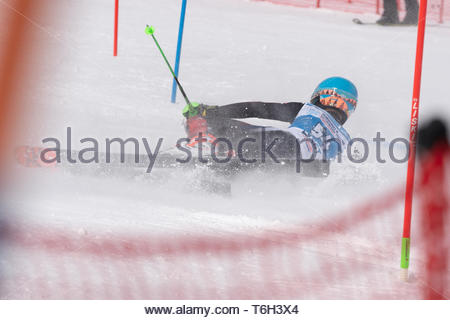 MOROZNAYA MOUNTAIN, KAMCHATKA, RUSSIA - MAR 28, 2019: Russian Alpine Skiing Cup, International Ski Federation Championship slalom. Skier Maxim Sitchik - Stock Photo