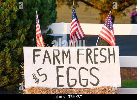 Proud American Farmers Patriotically Selling Farm Fresh Eggs Roadside in Central Oregon