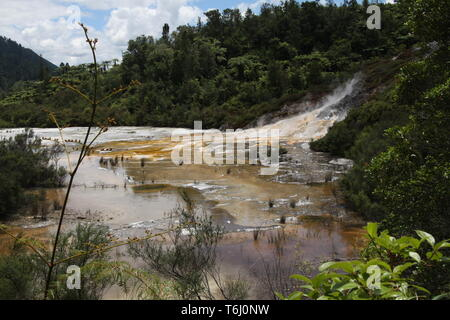 Orakei Korako hidden geothermal valley - Emerald terrace, New Zealand: View on colorful rainbow sinter terrace covered with yellow and white microbial - Stock Photo