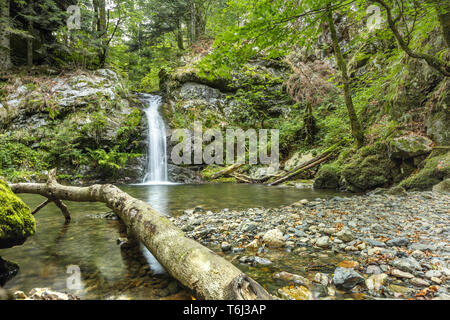 Prägbach waterfall situated above the village Präg, Southern Black Forest, Germany, municipality of Todtnau, district Lörrach - Stock Photo