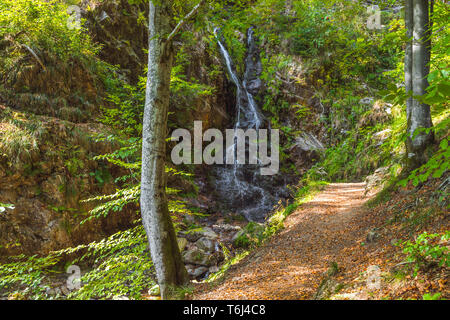 Fahl waterfall in the Wiesental valley, High Black Forest, Germany, region Feldberg, river Rothenbach near Todtnau - Stock Photo