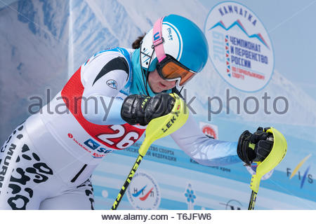 MOROZNAYA MOUNTAIN, KAMCHATKA, RUSSIA - MAR 29, 2019: Mountain skier Gavrish Veronika (Murmansk Region) at start. Russian Alpine Skiing Championship,  - Stock Photo