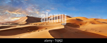 Sahara parabolic sand dunes of Erg Chebbi, Morocco, Africa - Stock Photo