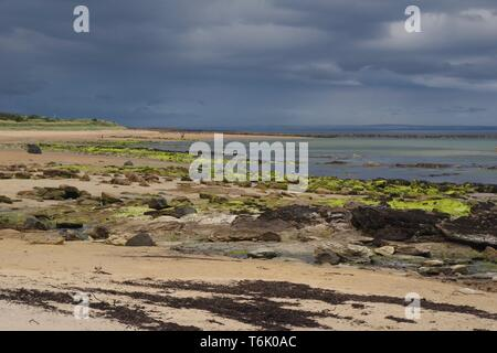 Carboniferous Sandstone Exposed along the Fife Coast at Kingsbarns Beach under a Threatening Grey Sky. Scotland, UK. - Stock Photo