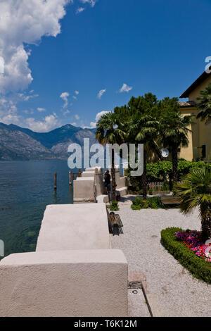 Malcesine, Palazzo dei Capitani o 'Miniscalchi': vista del Lago di Garda e del giardino  con palme e fiori.  [ENG] Malcesine, Palazzo dei Capitani (Ca - Stock Photo
