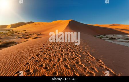beautiful landscape Hidden Vlei in Namibia Africa - Stock Photo