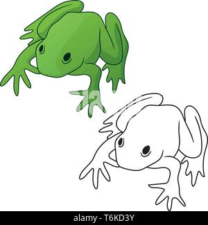 Frog in both full color green tones and black outline version isolated vector illustration - Stock Photo