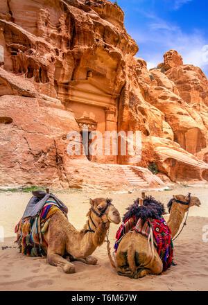 Camel resting on sand in little Petra, Jordan - Stock Photo