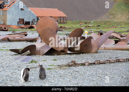 Stromness Bay, South Georgia and Sandwich Islands, February, 2018: Remnants of its past on the abandoned whaling station of Stromness. - Stock Photo