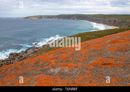 View from the Remarkable Rocks to Cape du Couedic - Stock Photo