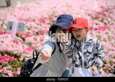 Kunming. 1st May, 2019. Visitors take selfies amid flowers at the World Horticultural Expo Garden in Kunming, southwest China's Yunnan Province, May 1, 2019, during the Labor Day national holiday. Credit: Pu Chao/Xinhua/Alamy Live News - Stock Photo
