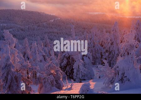 Mt. Brocken in winter at sunset, Harz mountains, Saxony-Anhalt, Germany, Europe - Stock Photo