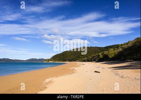 Golden sand, blue cloud sky. Totaranui beach is a 1km long beach in the Tasman Region of New Zealand - Stock Photo