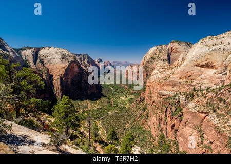 Landscape in Zion National Park - Stock Photo
