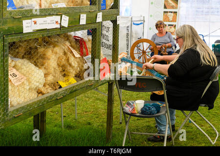 Demonstration of spinning & weaving (2 women) by wool exhibits (prize-winning fleeces & certificates) - Great Yorkshire Show, Harrogate, England, UK. - Stock Photo