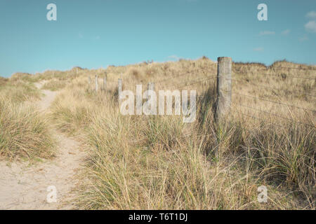 A fence runs along the top of sand dunes covered in wild grasses at the West Beach Nature Reserve in Littlehampton, West Sussex, UK. - Stock Photo
